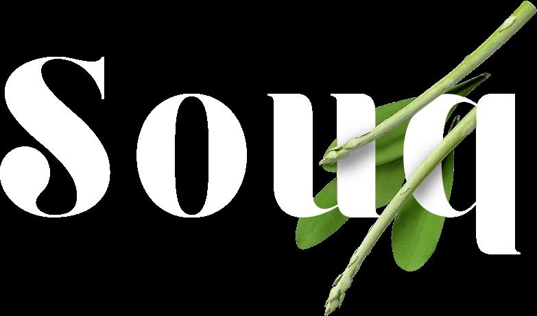 logo-souq-aspargo